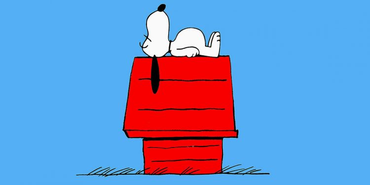 Snoopy dort, fini linsomnie
