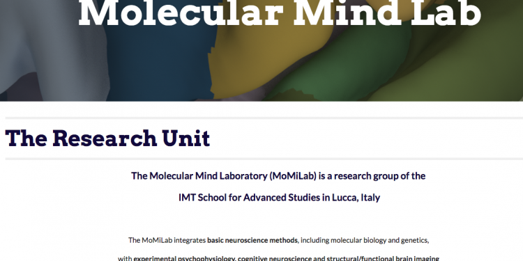 Momlab research Italie