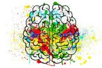 brain and cognition